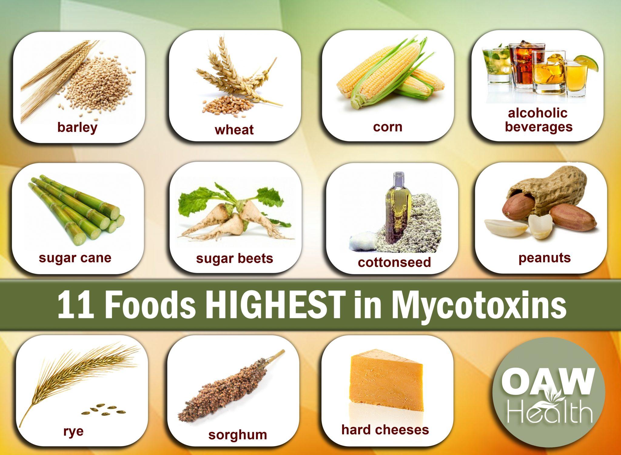 11-foods-highest-in-mycotoxins-www.oawhealth.com
