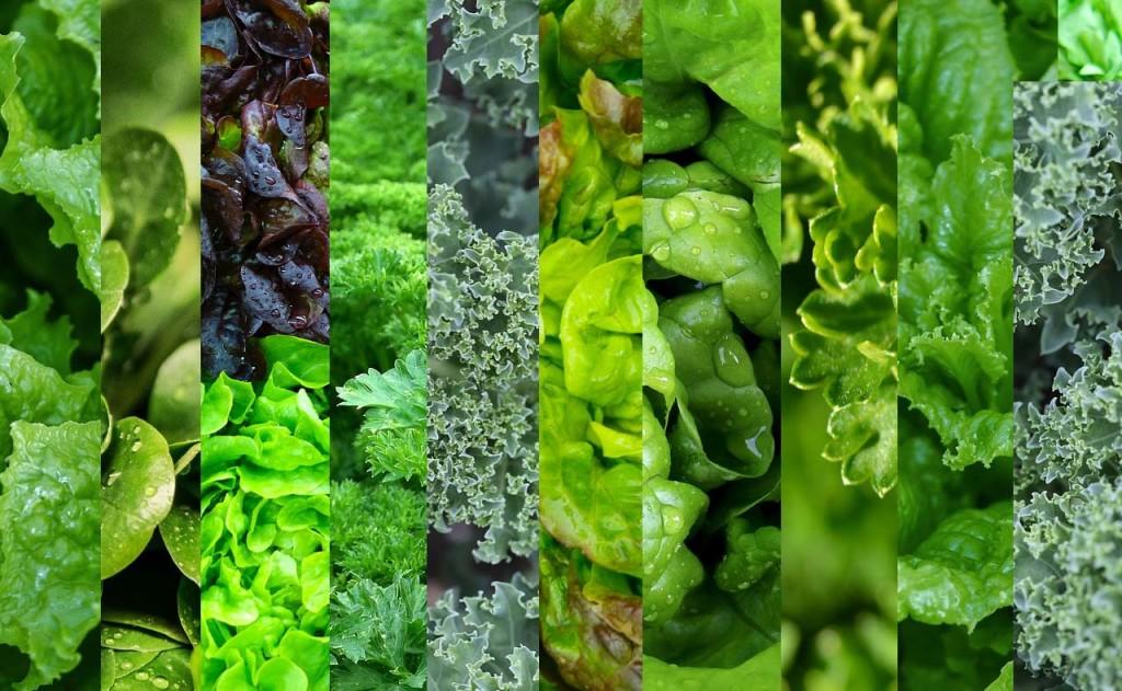 Mixed-Greens-www.superlife.com