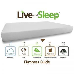 Live and Sleep - Resort 10-Inch Memory Foam Mattress-1